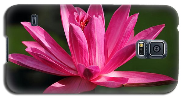 Pink Water Lily Galaxy S5 Case