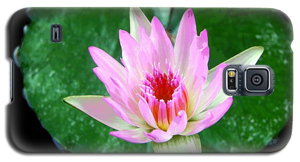 Galaxy S5 Case featuring the photograph Pink Waterlily Flower by David Lawson