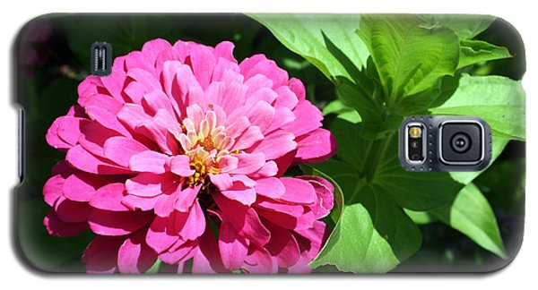 Galaxy S5 Case featuring the photograph Pink Zinnia by Ellen Tully