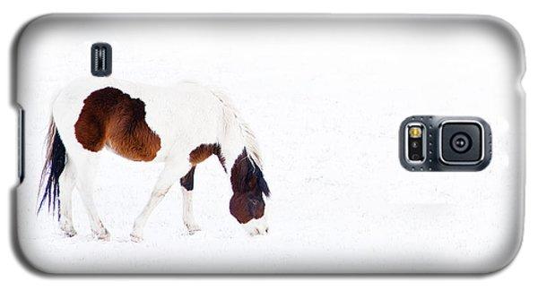 Pinto Pony Galaxy S5 Case