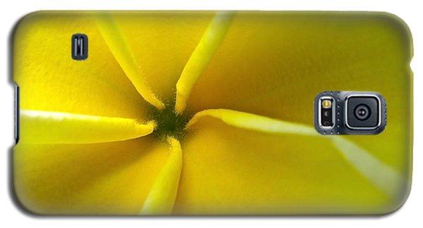 Pinwheel Plumeria Galaxy S5 Case by Joy Hardee
