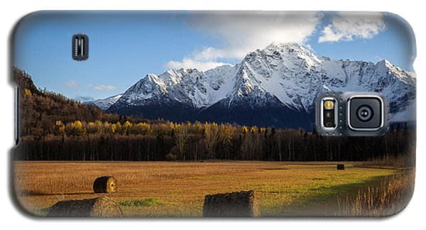Pioneer Hay Fields Galaxy S5 Case