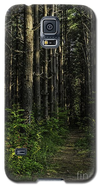 Pisgah Forest Trail Color Galaxy S5 Case