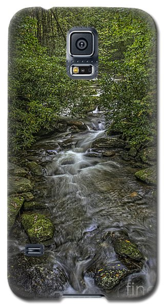 Pisgah Stream Galaxy S5 Case