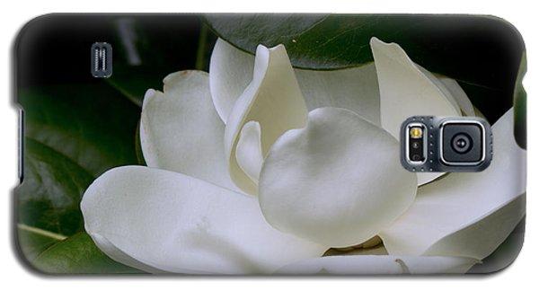 Plain Magnolia Galaxy S5 Case