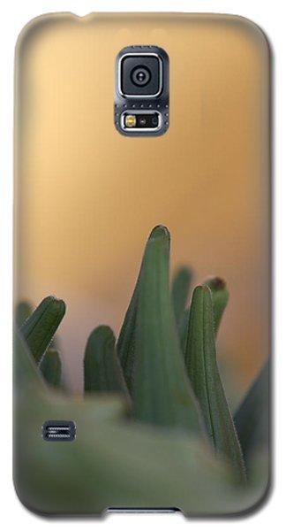 Planet Earth Galaxy S5 Case by Annette Hugen