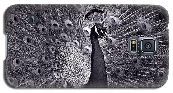 Platinum Galaxy S5 Case by Lorenzo Cassina