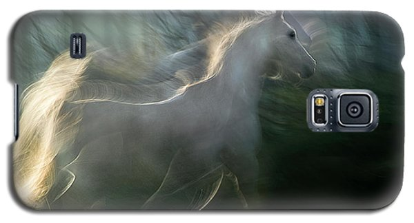 White Horse Galaxy S5 Case - Play Graund by Milan Malovrh