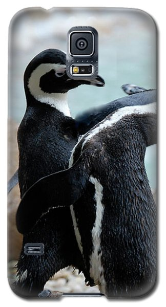 Galaxy S5 Case featuring the photograph play Nice by Kathy Gibbons