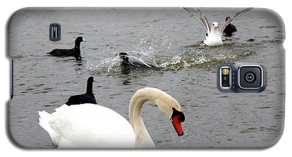Playful Fun On The Lake Galaxy S5 Case