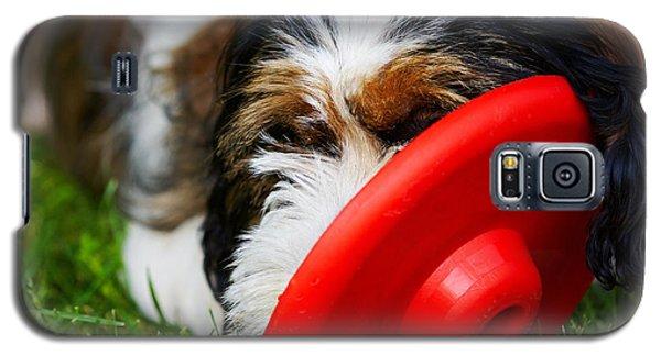 Playing Dog Galaxy S5 Case