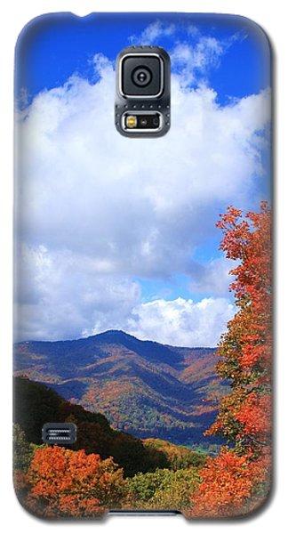 Plott Balsam Mountains Foliage Galaxy S5 Case