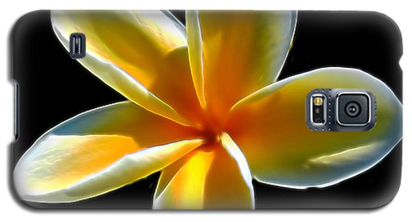 Plumeria Against Black Galaxy S5 Case