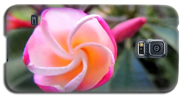 Galaxy S5 Case featuring the photograph Plumeria Curve by Kristine Merc