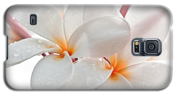 Galaxy S5 Case featuring the photograph Plumeria by Roselynne Broussard