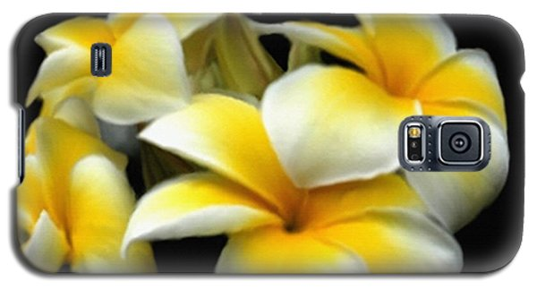 Plumeria Yellow And White Galaxy S5 Case
