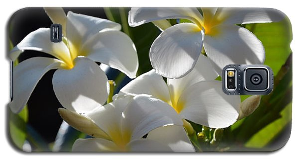 Galaxy S5 Case featuring the photograph Plumeria's IIi by Robert Meanor