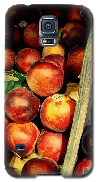 Galaxy S5 Case featuring the photograph Plums And Nectarines by Miriam Danar