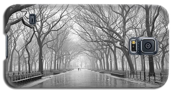 New York City - Poets Walk Central Park Galaxy S5 Case by Dave Beckerman