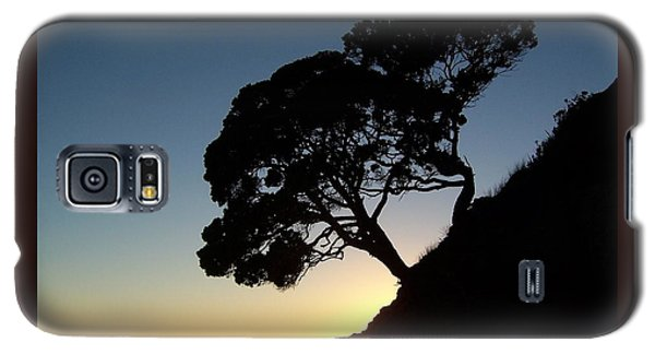 Galaxy S5 Case featuring the photograph Pohutukawa Trees At Sunrise by Peter Mooyman