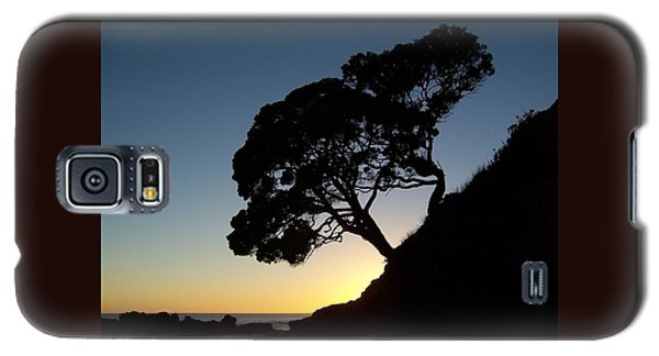 Pohutukawa Trees At Sunrise Galaxy S5 Case
