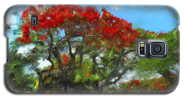 Galaxy S5 Case featuring the painting Poinciana Trees Of Coral Gables by Ted Azriel