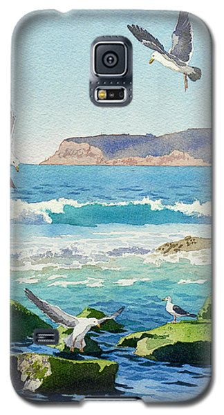 Seagull Galaxy S5 Case - Point Loma Rocks Waves And Seagulls by Mary Helmreich