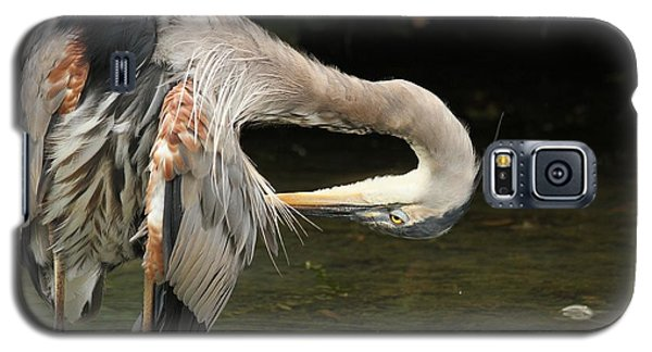 Galaxy S5 Case featuring the photograph Point Of Interest by Heather King