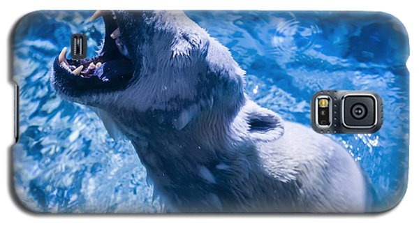 Polar Bear Galaxy S5 Case by Chris Flees