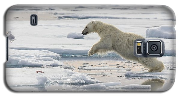 Polar Bear Jumping  Galaxy S5 Case