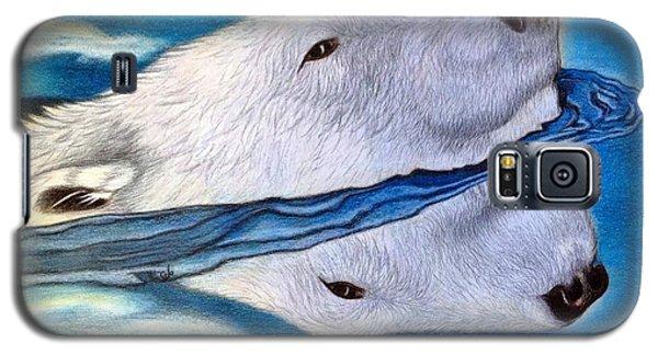 Polar Dip Galaxy S5 Case