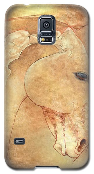 Poll Meet Atlas Axis Galaxy S5 Case by Catherine Twomey