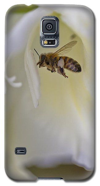 Pollen Carrier Bee Galaxy S5 Case