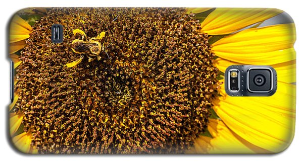 The Sunflower And The Bee Galaxy S5 Case