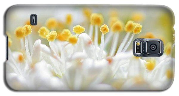 Pollen Galaxy S5 Case