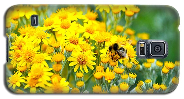 Galaxy S5 Case featuring the photograph Pollination by Crystal Hoeveler