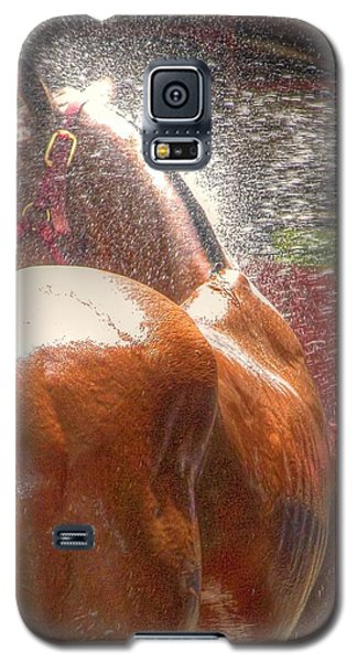 Polo Pony Shower Hdr 21061 Galaxy S5 Case by Jerry Sodorff