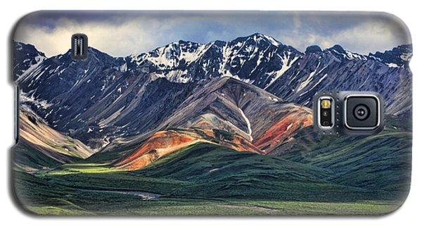 Mountain Galaxy S5 Case - Polychrome by Heather Applegate