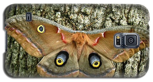 Galaxy S5 Case featuring the photograph Polyphemus Moth by William Tanneberger