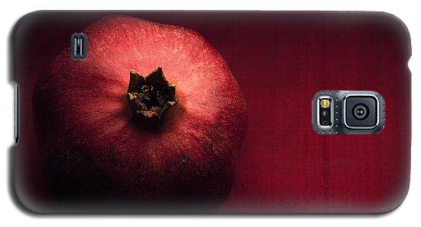 Pomegranate Galaxy S5 Case by Ana V Ramirez