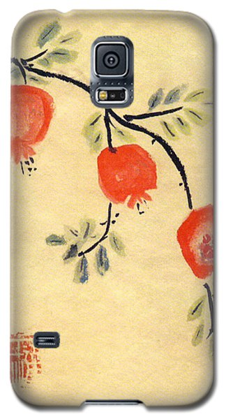 Pomegranates Galaxy S5 Case