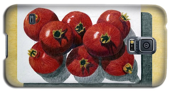 Pomegranates On A Plate Galaxy S5 Case