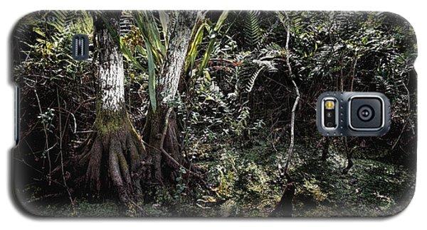 Pond Apple-1 Galaxy S5 Case