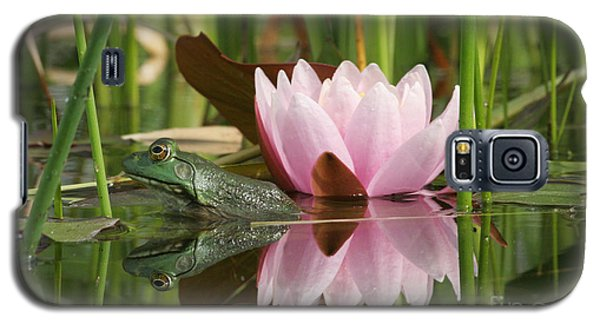 Pond Reflections Galaxy S5 Case by Judy Whitton