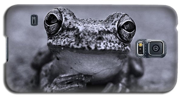 Pondering Frog Bw Galaxy S5 Case