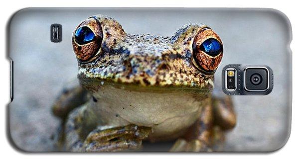 Pondering Frog Galaxy S5 Case by Laura Fasulo