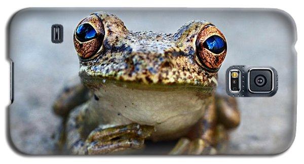 Pondering Frog Galaxy S5 Case