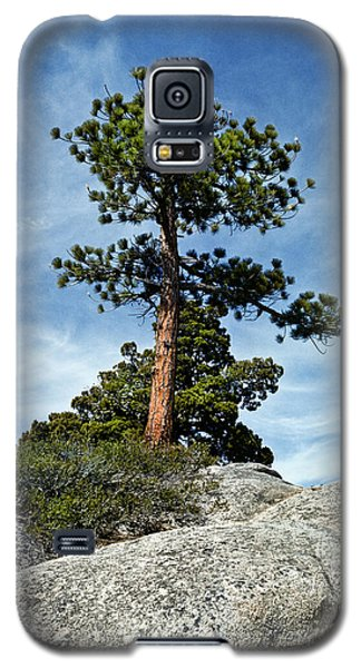 Ponderosa Pine And Granite Boulders Galaxy S5 Case by Jeff Goulden