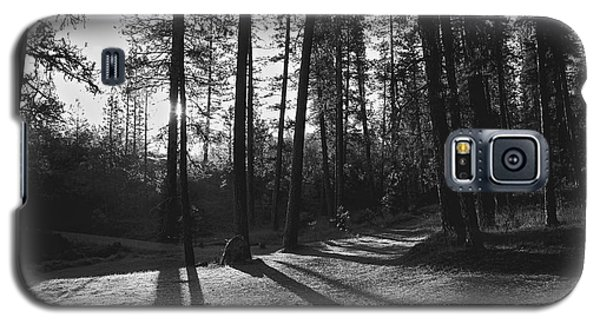 Galaxy S5 Case featuring the photograph Ponderosa Shadows by Lennie Green