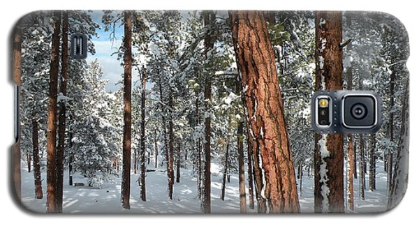 Galaxy S5 Case featuring the painting Ponderosa Winter by Jennifer Lake